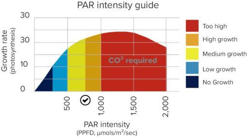 ppfd-vs-photosynth-510x283
